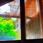 すきま風に結露…冬の自宅のお悩み対策グッズ