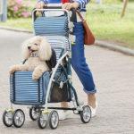 フランスベッド ペットとお散歩できるペットカート ブレーキ 杖ホルダー付き ラクティブペット